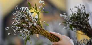 Сьогодні - Вербна неділя: походження свята, традиції і народні прикмети